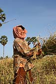Phat is a rice farmer living in Kompong Chhnang province. Cambodia.